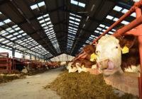 Zemědělci žádají omluvu od poslankyně EP Hohlmeier
