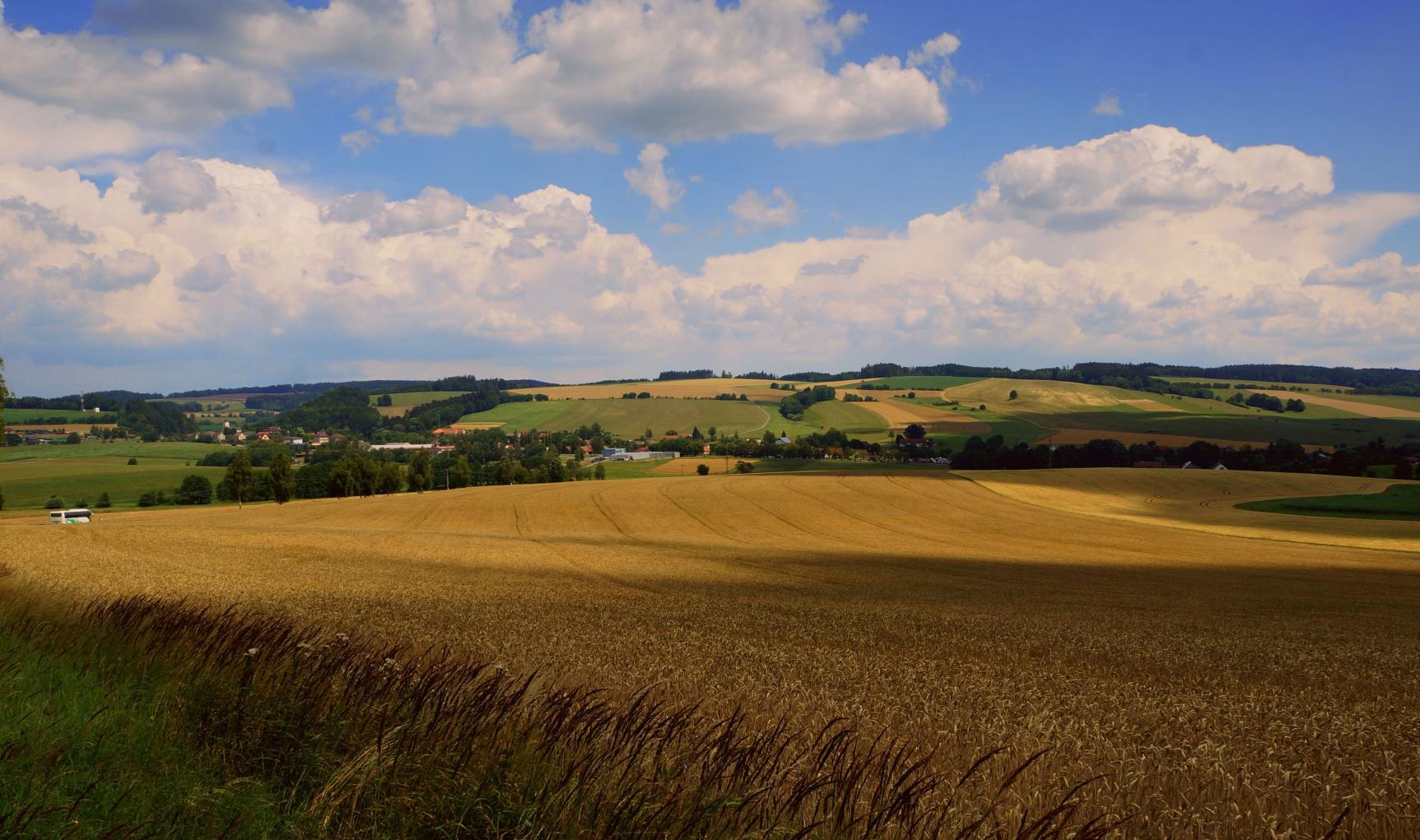 Mýty a fakta o českém zemědělství I.
