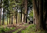 Stanovisko k účasti společnosti UNILES v tendrech Lesů ČR