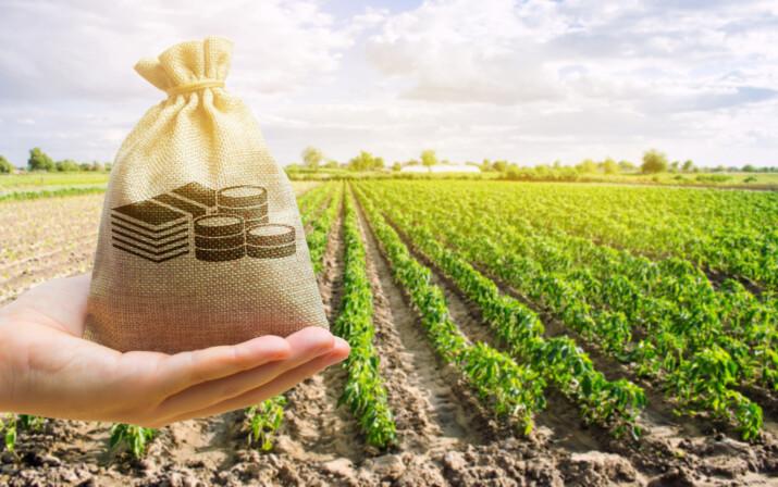 Nárokové zemědělské dotace